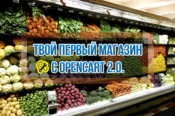 Курс Пример создания Интернет-магазина на OpenCart